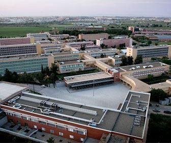 Agenda de actividades en la Universidad Pablo de Olavide del 6 al 12 de noviembre