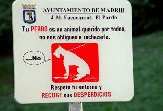 Tener una mascota es una responsabilidad