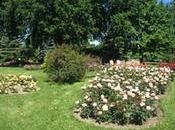 Espectaculares Jardines Donde Puedes Olvidarte Mundo