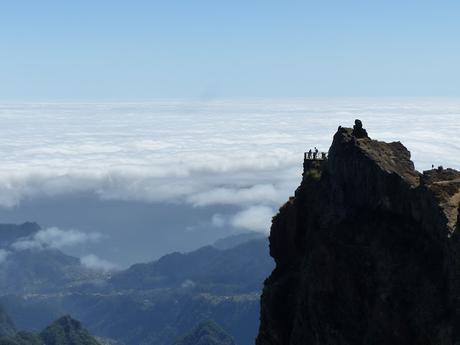 Madeira para celebrar los 40!