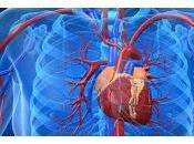 Tratar Hipertensión reduce Riesgo Cardiovascular