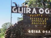 Güira Oga: refugio animales silvestres