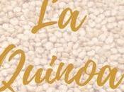 Buenas Razones Para Consumir Quinoa