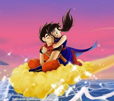 descargar imagenes de goku de amor volando