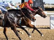 Tripletes Dobletes última jornada Carreras Caballos Gran Hipódromo Andalucía