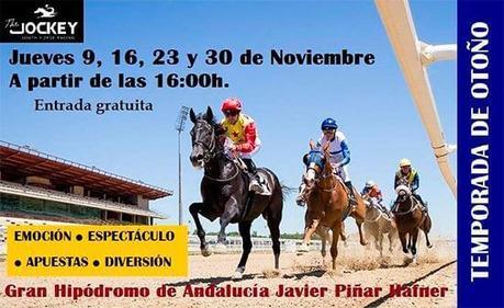 Próxima jornada de Carreras de Caballos en el Gran Hipódromo de Andalucía