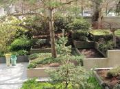 vegetación como confort térmico actuaciones para urbanismo sostenible]