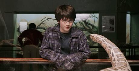Harry Potter y la infancia maltratada (I)