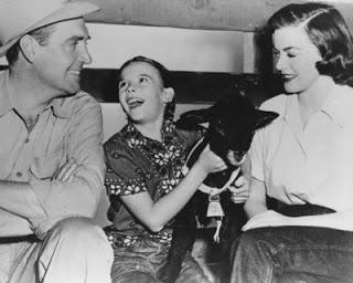 TIERRA PROMETIDA, LA (Green Promise, the) (USA, 1949) Vida Normal