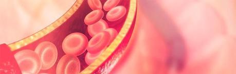 Síntomas de las plaquetas bajas
