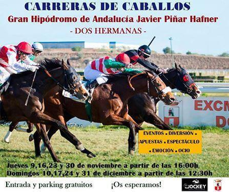 Mañana Jueves se cierra el ciclo vespertino de carreras de caballos en el Gran Hipódromo de Andalucía