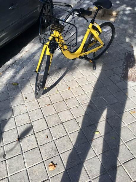 La imagen puede contener: bicicleta y exterior