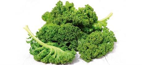 Kale, rica en minerales, vitaminas y antioxidantes