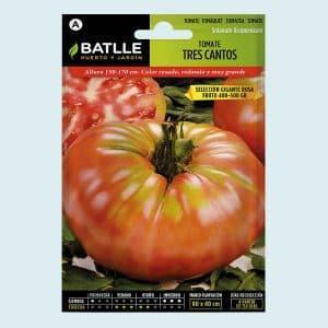 semillas de tomate tres cantos selección gigante rosa