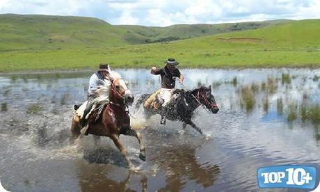 Brasil-entre-los-paises-con-mas-caballos-del-mundo