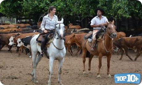 Argentina-entre-los-paises-con-mas-caballos-del-mundo