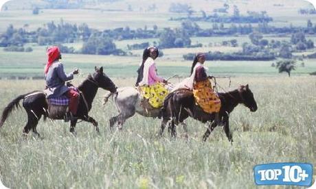 Etiopía-entre-los-paises-con-mas-caballos-del-mundo