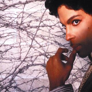 Prince - Cinnamon girl (2004)