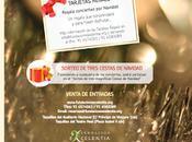 Fundación Excelentia prepara veintena conciertos para Navidad