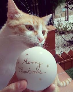 UNA SIMPLE RAMA... PERO MUCHA FELICIDAD... Estas Navidades, huye de lo ostentoso y superficial... FELICES FIESTAS!!!