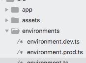 Variables Ambiente Angular