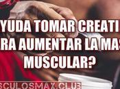 ¿Ayuda tomar Creatina para aumentar masa muscular?