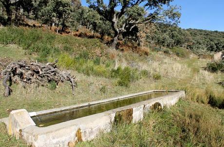 Abrevadero para el ganado Cueva de la Mora
