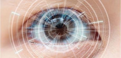 El cerebro puede anticipar lo que el ojo va a captar