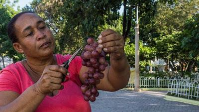 Arnoly, mujer trabajadora de barrio,vendedora de uvas, vinos y mermeladas.