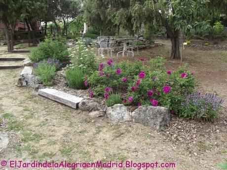Proyecto de una terracita en zona del jardín con pendiente