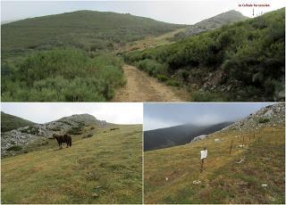 Millaró de la Tercia-Braña la Mude-La Pizarra-La Foya