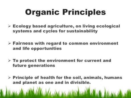 Una Visión de los alimentos y la agricultura ecológica en 2025