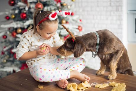 navidad estrés mascotas comidas