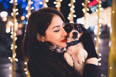 mascotas estrés navidad cohetes
