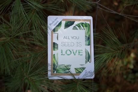 Tarjetas de Navidad para regalar, leer y PLANTAR