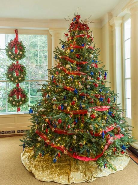 Tu Árbol de Navidad, foco de insectos