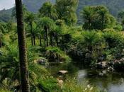 Mount Abu: escapada montañas Rajastán