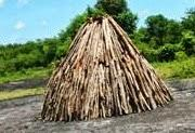 horno-carbón-manati