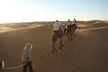 Ksar Ghilane_ruta en dromedario_Tunez