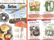 primera Guía Campo Setas otros hongos
