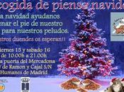 Recogida pienso navideña (Humanes 15-16 Diciembre)