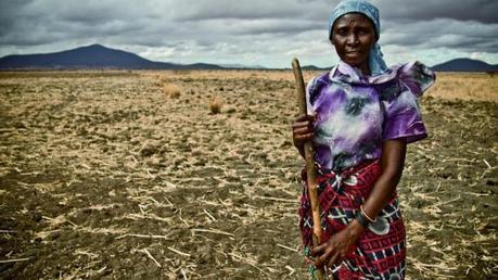 El objetivo del crecimiento económico sostenible y empleo decente: ODS 8