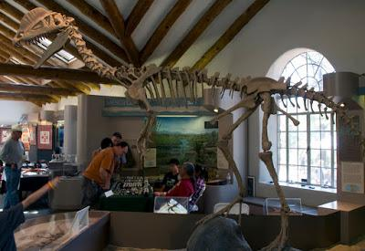 Paleoficha: Dilophosaurus wetherilli