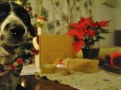 Unboxing Guaulove especial Navidad