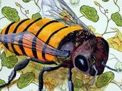 activismo consumo miel