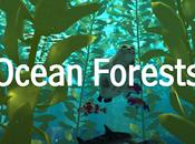 Ocean Forests Amazing Amphibians! #Apps para mejorar vocabulario científico inglés