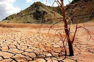 El 30% de la Tierra tendrá sequía, vea cuándo