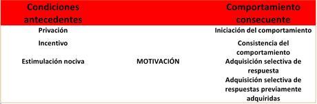 ¿Qué es realmente la motivación?