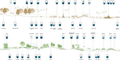 Hacia la Metamorfosis sintética de la costa. Diseñando paisajes resilientes.