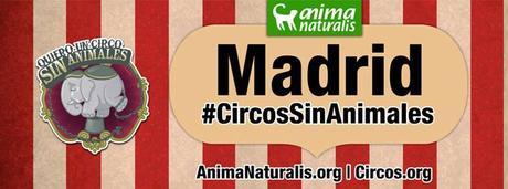 manifestacion contra el uso de animales en circos
